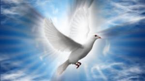Imágenes del espíritu santo