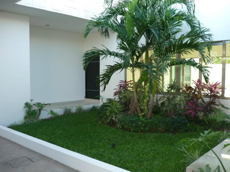 Image gallery la casa de frente for Disenos de frentes de casas