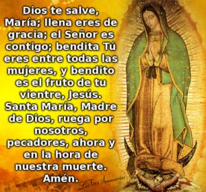 Imágenes de la virgen de Guadalupe con freses